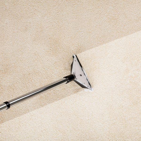 use for carpet shampoo inject dalcon hygiene