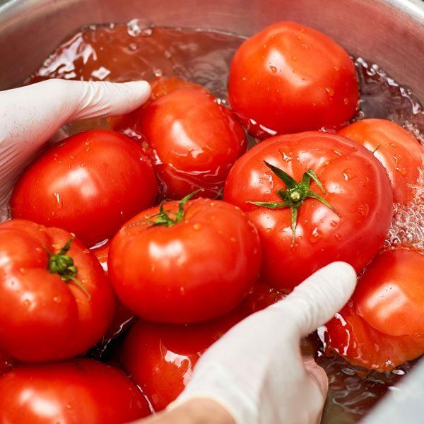 Food-processing--dalcon-hygiene